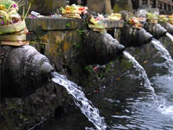 Purification ceremony at Tirta Empul