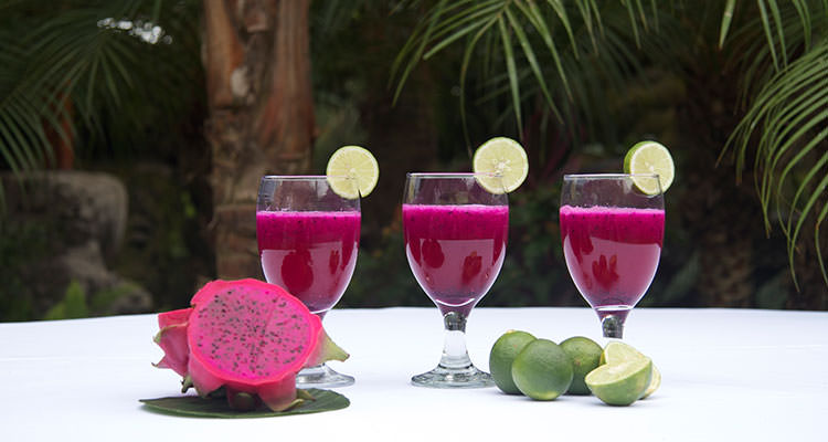 Every morning, different fruit juice is served for you during your Ubud yoga retreat at Oneworld Retreats in Bali.