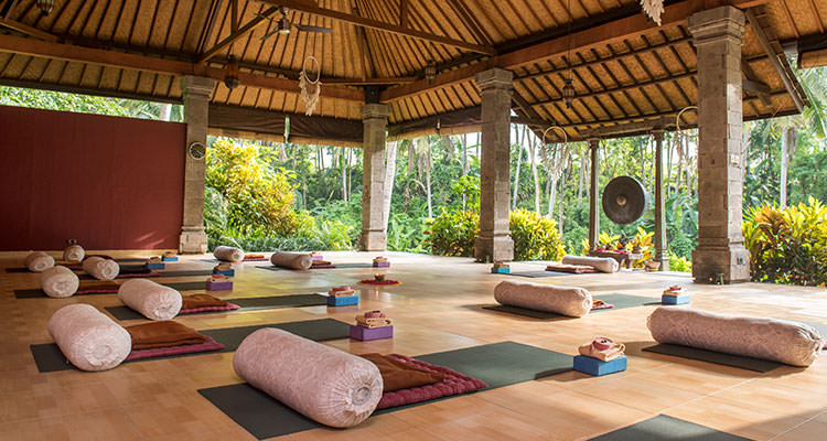 Your daily yoga sessions take place in the beautiful yoga shala, opening to green nature at Oneworld Retreats in Ubud, Bali.